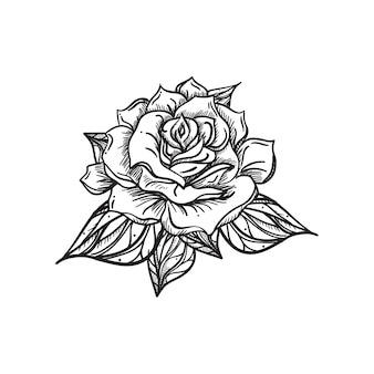 Hand drawn wedding rose. flower template for wedding, holiday, celebration.