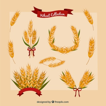 Сбор рисованной пшеницы