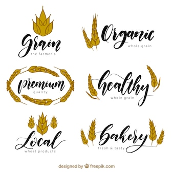 Hand drawn wheat logo collection