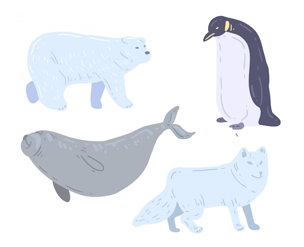 Hand drawn white bear, sea lion, penguin and  white wolf. polar animals vector illustration
