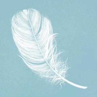青い背景に手描きの白い羽のベクトル