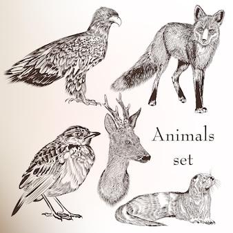 손으로 그린 야생 동물 모음