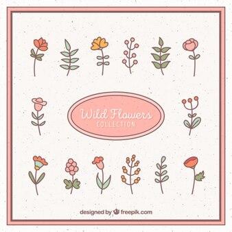 손으로 그린 야생 꽃 모음