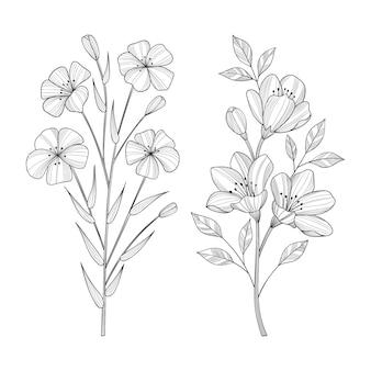 손으로 그린 야생 꽃과 잎 그림.