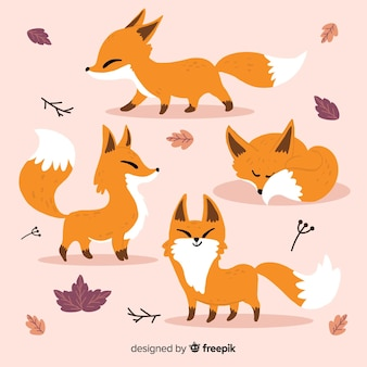 Hand drawn wild fox collection