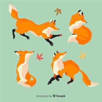 Коллекция рисованной дикой лисы