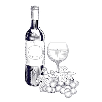Hand drawn wine bottle, glass and grapes. engraving style.