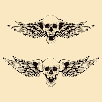 Hand drawn winged skull set