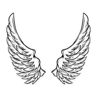 白で隔離される手描きの翼