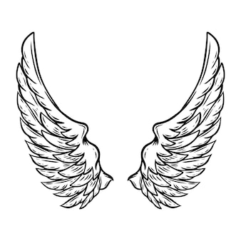 Hand drawn wings isolated on white