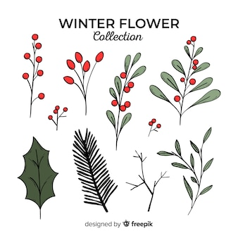 Hand drawn winter flowers collection
