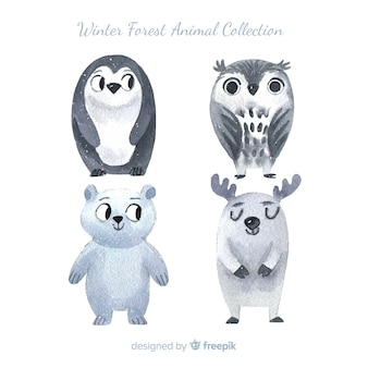 Hand drawn winter forest animal pack