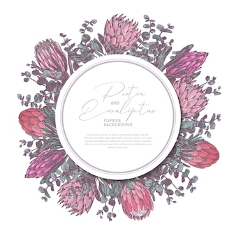 Hand drawn with protea and eucalyptus with circle label or tag illustration