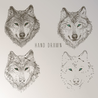 Hand drawn wolf head collection