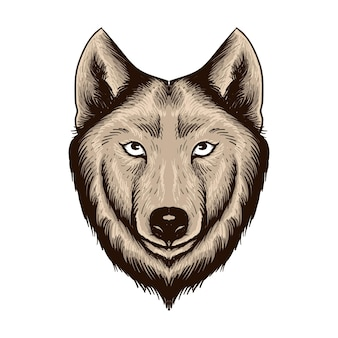 Hand drawn wolf head isolated