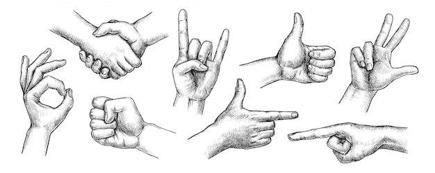 손 제스처를 설정합니다. 격리 된 평면 손으로 그린 인간의 손가락 제스처 컬렉션. 악수, 엄지 손가락, 주먹, 확인 표시, 악마 뿔 제스처, 집게 손가락 가리키는 통신 드로잉 벡터 일러스트 레이션