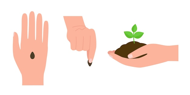 Hand grow seed plant with earth new green sprout plant growth save ecology and environment