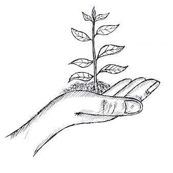 Рука держит ветку дерева, иллюстрация