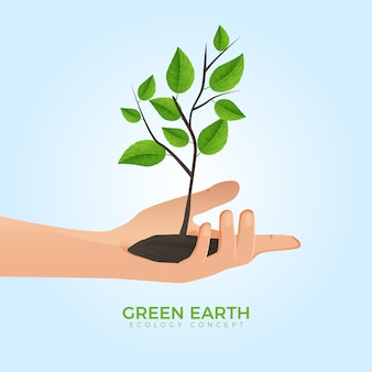 Hand holding growing tree green eco concept