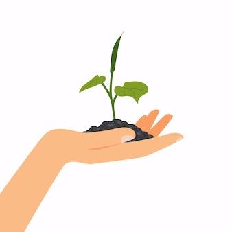 もやしを持っている手。生態学の概念。イラスト。白い背景の上。