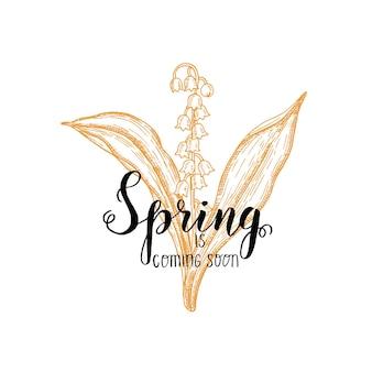 손으로 만든 글자-봄이 곧 올 것입니다. 빈티지 손으로 그린 계곡의 백합. 스케치. 봄 꽃.