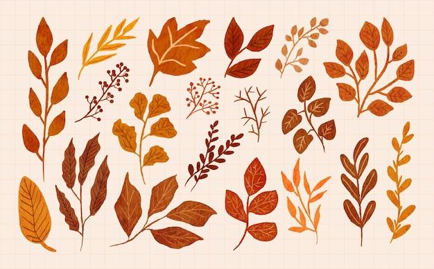 수채화 일러스트 세트에 손으로 그린 가을 잎과 가지