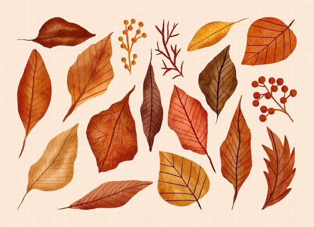 Ручная роспись осенних листьев в наборе акварельных иллюстраций