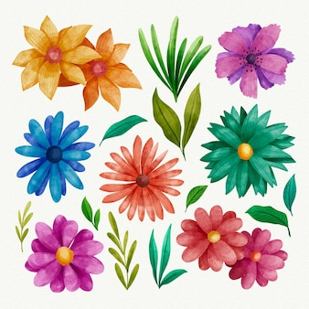 Hand paintedflower collection