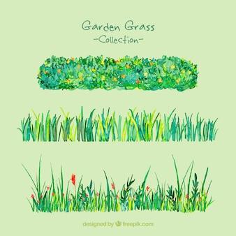 手描きの庭の芝生パック