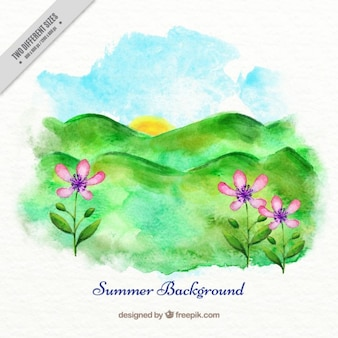 Hand painted meadow background