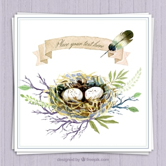 Hand painted nest on a branch