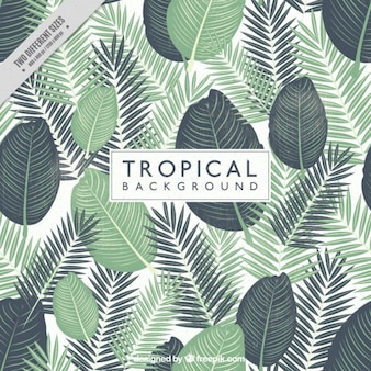 Hand painted tropical leaves background