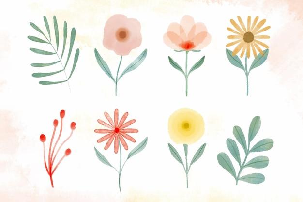 手描きの水彩花コレクション