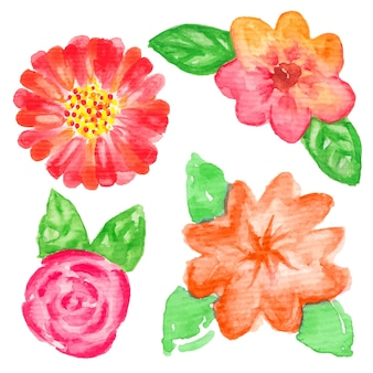 Hand painted watercolor flowers. graphic design elements for baby shower and wedding invitations, birthday cards, corporate identity and business cards, web sites and scrapbooking. vector illustration