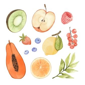手描きの水彩フルーツコレクション