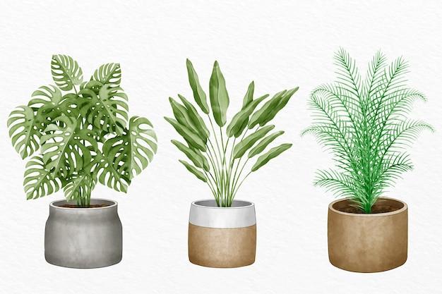 손으로 그린 수채화 관엽 식물 세트