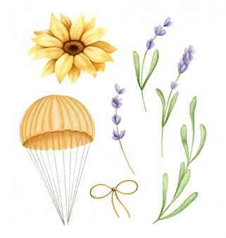 Hand painted watercolor illustrations of vintage parachute, lavender and sunflower