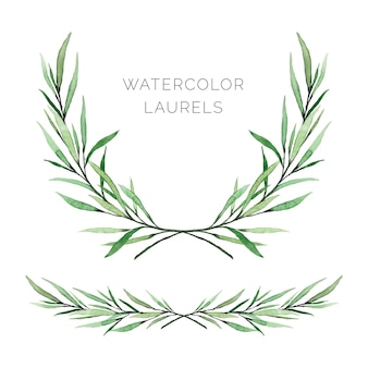 Hand painted watercolor laurels