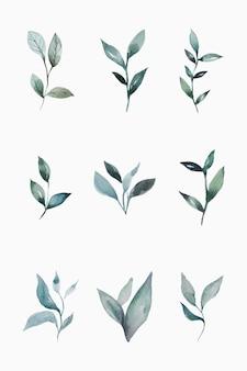 손으로 그린 수채화 잎 세트