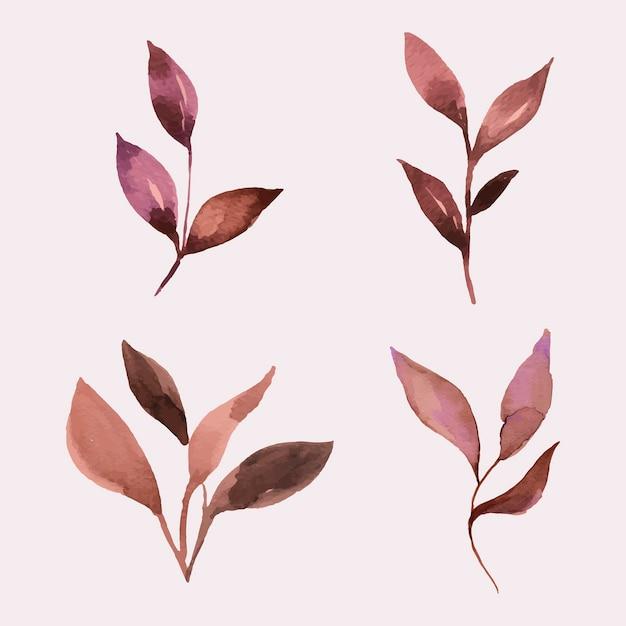 Ручная роспись акварель листья набор