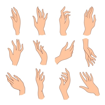 Hand, palm up, black and white illustration.