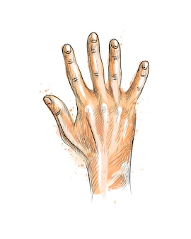 Hand showing five fingers from a splash of watercolor, hand drawn sketch.  illustration of paints