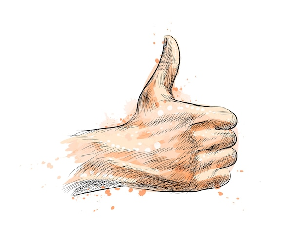 Hand showing symbol like. making thumb up gesture from a splash of watercolor, hand drawn sketch.  illustration of paints