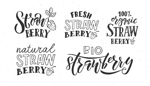 농민 시장 유기농 식품 및 자연을 위한 손으로 스케치한 딸기 레터링 타이포그래피 개념