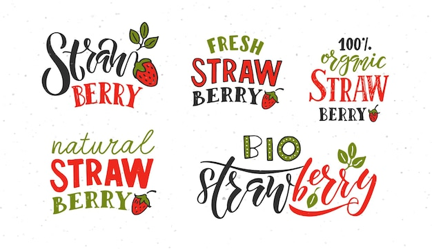 손으로 스케치한 딸기 레터링 타이포그래피 개념 농민 시장 유기농 식품 자연