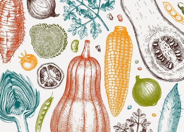 手スケッチ野菜ベクトル背景。健康食品成分バナーテンプレート。ヴィンテージ野菜、ハーブ、メニュー、ウェブバナー、レシピ、ブランディングのためのキノコのイラスト。ベクトルイラスト。