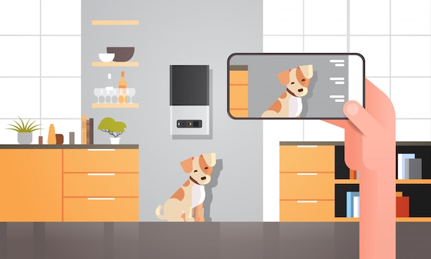 Hand using smartphone controlling automatic digital pet dry food storage ai meal feeder dispenser concept smart animal feed online mobile app modern living room interior horizontal