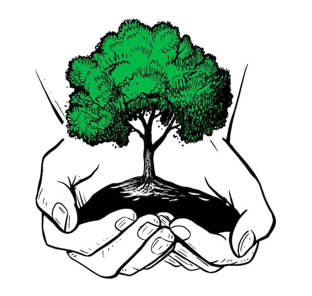 緑の木と手。エコロジーテーマ