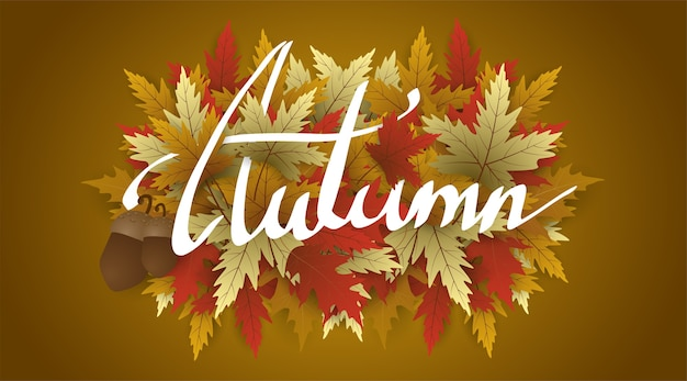Hand writing autumn text  boder, banner with leaves.holiday