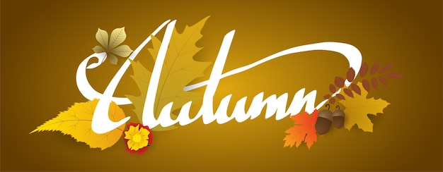 Hand writing autumn text  boder, banner with leaves.